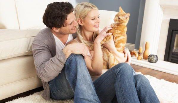猫好き男性と話すときに気を付けたいキーワードとは